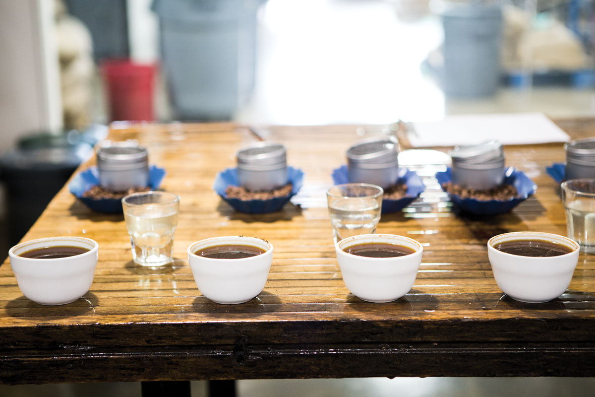 Cupping_CE