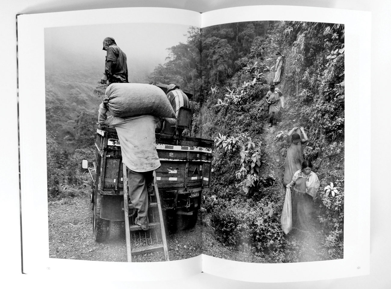 An image from Sebastião Salgado's book The Scent of a Dream. (Photo: Cory Eldridge.)