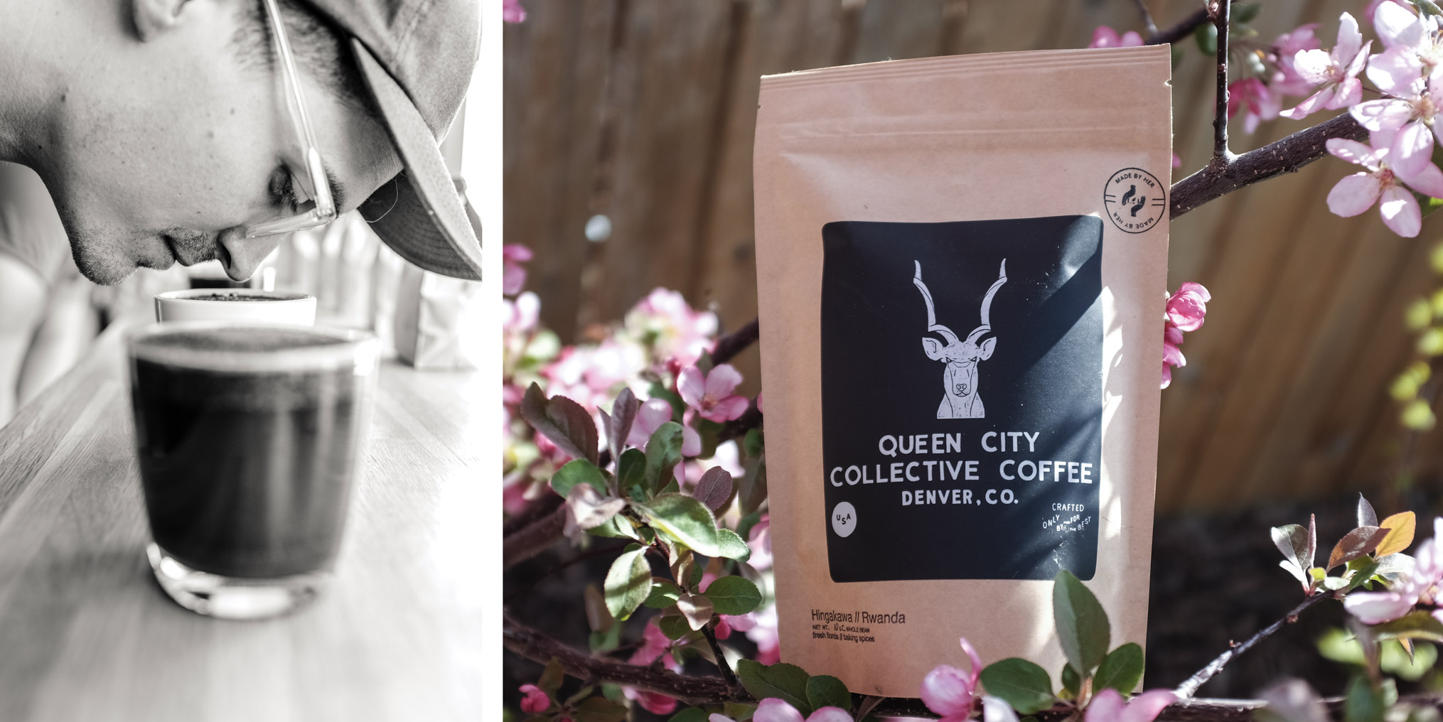 Queen City Coffee Collective
