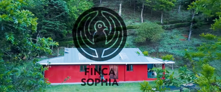Finca Sophia Coffee Earns Best of Panama 2020